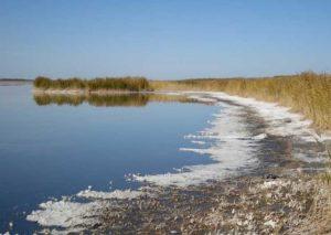 Солёное озеро Гуселетово